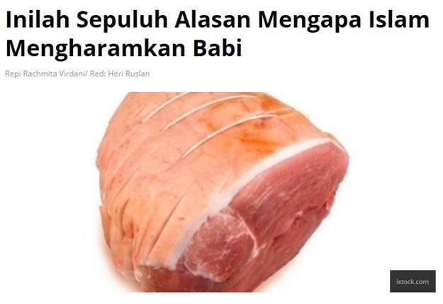 alsan babi
