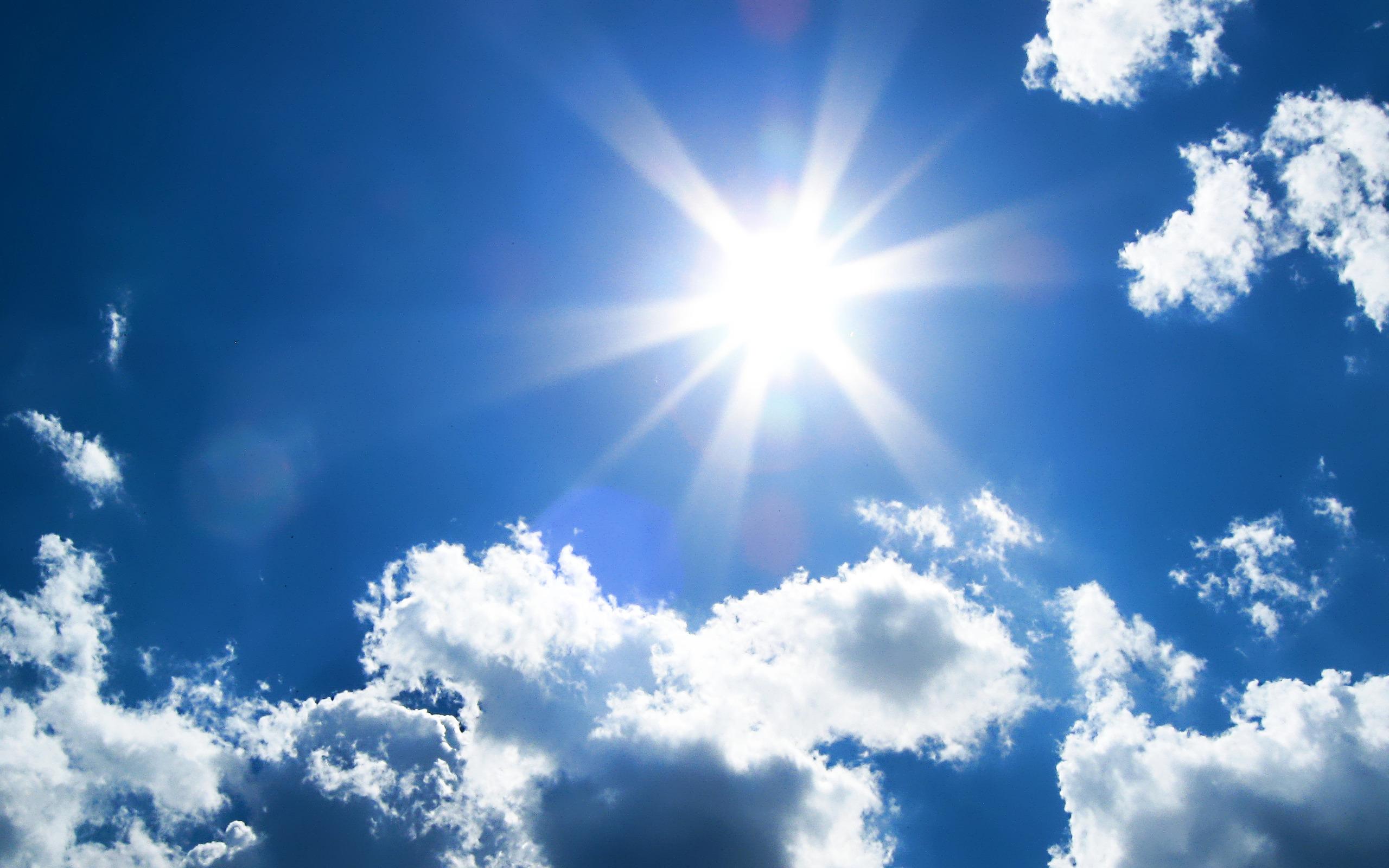 sun sh
