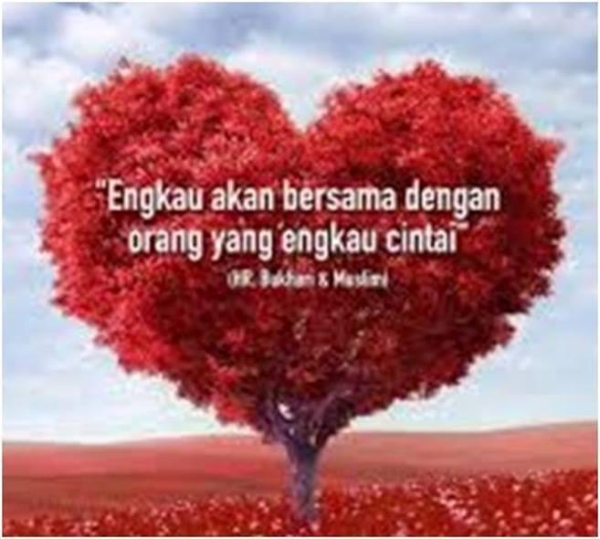 pohon cinta 1