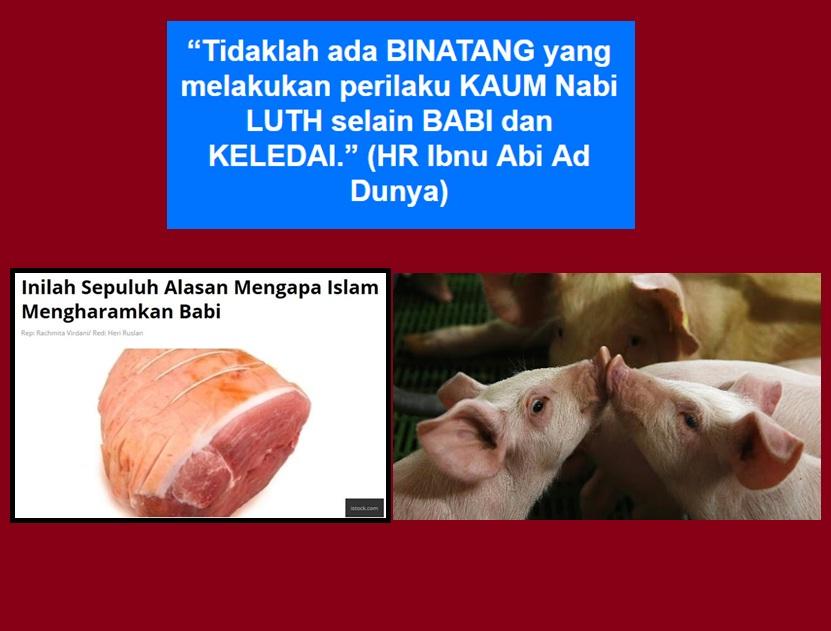 bbai luth