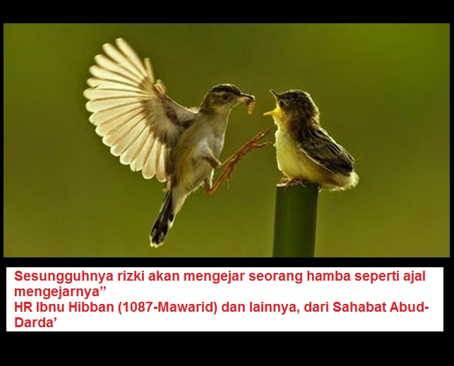 burungasa